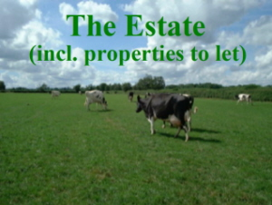 Estate properties available to let